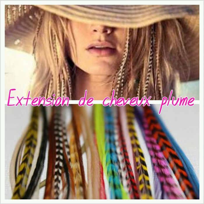extension cheveux plume