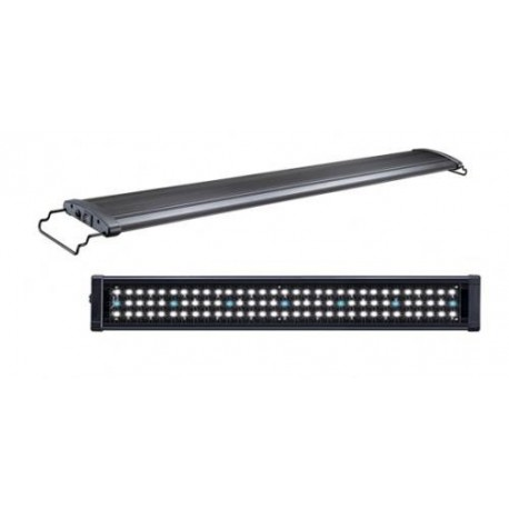 rampes led aquarium